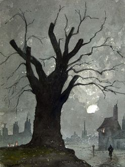 Elm Tree by Paul Braddon